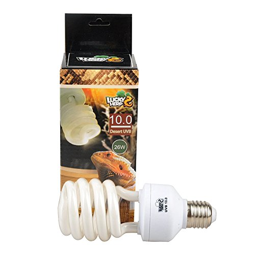 Bombilla fluorescente UVA y UVB de 10,0 compacta para reptiles