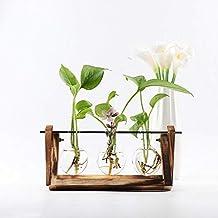 Buche Buche Holz Wandmontage Blumenvase Rasch Design Schl/üsselbrett aus Holz mit Ablage und Reagenzglas als Vase