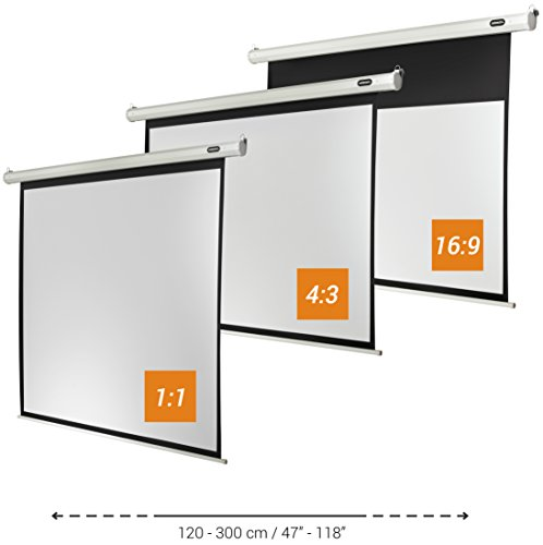 celexon projector screen electric Economy 280 x 280 cm 1 1