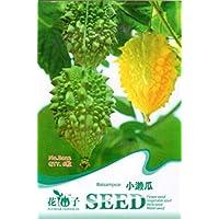 PlenTree Bálsamo de semillas vegetales de frutas 6 bálsamo pera de uva dulce delicioso natural B022 Por Mikedaoer