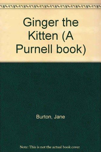 Ginger the kitten