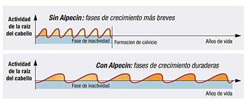 419 WalrihL - Alpecin Champú Doble Efecto, 2 x 200 ml - Champú anticaída y anticaspa