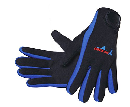 Neopreno anti-scratch impermeables usar-resistencia guantes de buceo c
