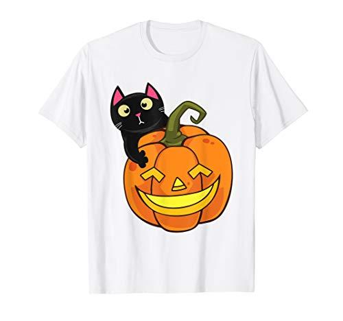 Katze Halloween Kürbis Lustige Süße Kätzchen Kostüm - Kätzchen Kostüm Tragen