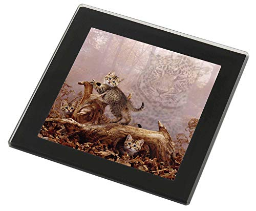 Advanta - Glass Coasters Kätzchen und Leopard -Uhr Glasuntersetzer mit schwarzem Rand -