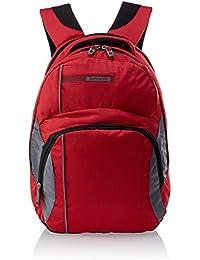 Samsonite Team Hiking Backpack m-full, 31x 44x 24cm