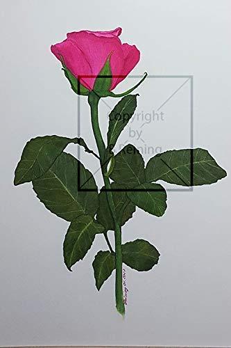 Rosen in Aquarell A4, Unikat, von Handgemalt, kein Kunstdruck, Original -