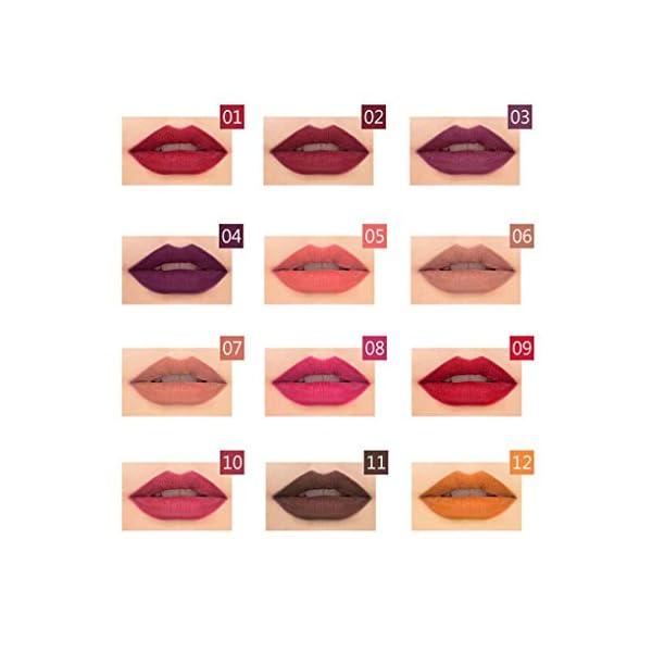 Bomcomi Pudaier 12pcs / Set Impermeable Perfilador de Labios liner12pcs linermatte/Set de Maquillaje de Labios de Larga…