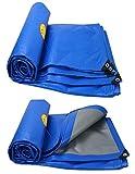 ALLIWEI Leichte Plane Wasserdichte Isolierung Regendicht Kunststoff Tuch Hohe Dichte Doppelschicht Polyethylen LKW Plane Outdoor Garten Camping Zelt 200g / Quadratmeter (größe : 4x5m)