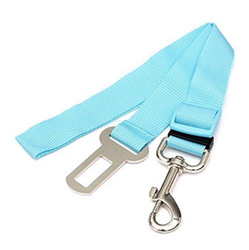adjustable-car-safety-dog-seat-belt-blue