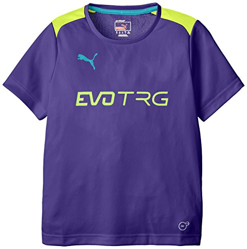 Puma It Evo Training Maillot Homme Fluro Yellow/Prism