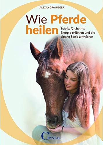 Wie Pferde heilen: Schritt für Schritt Energie erfühlen und die eigene Seele aktivieren