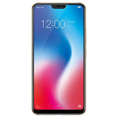 Vivo V9 (Gold, 64GB) Without Offers