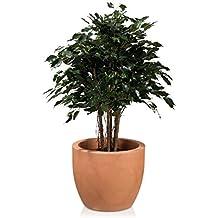 Amazon Fr Pot De Fleur Terre Cuite