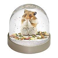 Advanta Group Lunch Box Hamster Photo Snow Globe Stocking Filler Gift, Multi-Colour, 9.2 x 9.2 x 8 cm
