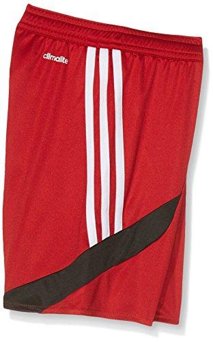 adidas Jungen Nova 14 Trainingsshorts University Red/White/Black