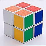 NFHNBABO El Cubo De Rubik Cubo 2X2 Velocidad del Cubo Magnético Etiqueta De Bolsillo Puzzle Cubo Profesional Juguetes Educativos para Niños