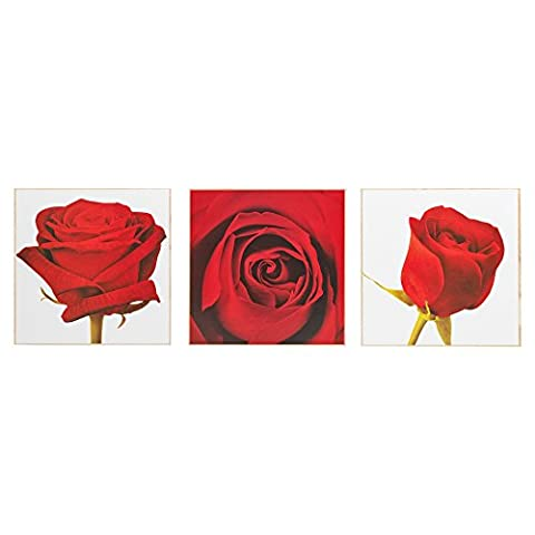 Set of 3 Split Picture Wooden Canvases Home Decor Wall
