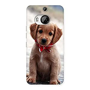Special Looking Puppy Multicolor Back Case Cover for HTC One M9 Plus