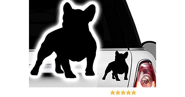 Hr Werbedesign 2x Auto Aufkleber Französische Bulldogge French Bulldog Bulli Bully Frenchi Dog4 Auto