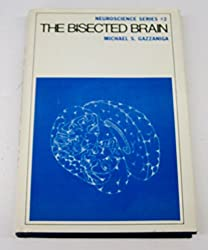 The bisected brain