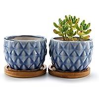 T4U 8.3CM Piña Maceta de cerámica vidriada Cactus suculento con bandejas de bambú Azul Lote de 2, decoración de casa y Oficina, Regalo de Boda, cumpleaños, Navidad