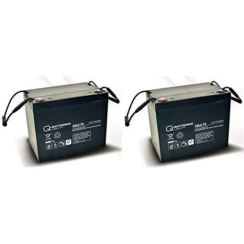 Blei Akku Batterie 2 x 12V/75Ah wie 77Ah für Rollstuhl Elektromobil Meyra Sprint