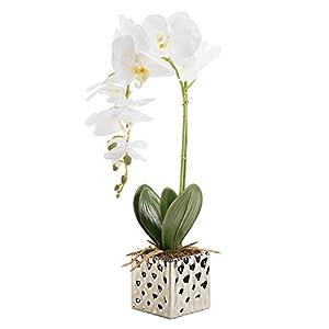 CLOCOLOR Flores artificiales de orquídeas Bonsái de Phalaenopsis con maceta de alta calidad para decoración hogar de…