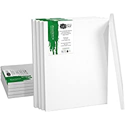 Artina Set de 10 lienzos Blancos de 100% algodón con bastidores robustos - Calidad >Akademie< - 280g/m² - 30x40 cm