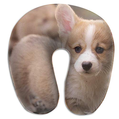 Nifdhkw Multifunctional Neck Pillow Corgi Puppy U-Shaped Soft Pillows Portable for Sleeping Travel Unisex11