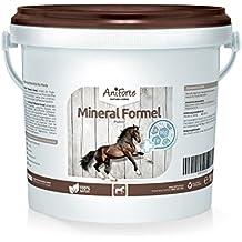 AniForte Mineral Fórmula 1 kg vitaminas minerales Caballos de Producto Natural para Caballos ID: 509