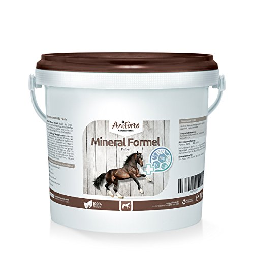 AniForte Mineral Formel 1 kg Vitamine Mineralstoffe Pferde- Naturprodukt für Pferde (Senior Formel)