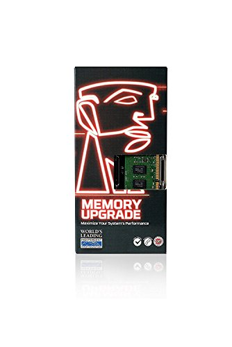 Kingston KVR21N15S8/8 - Memoria RAM interna de 8 GB, color negro y verde
