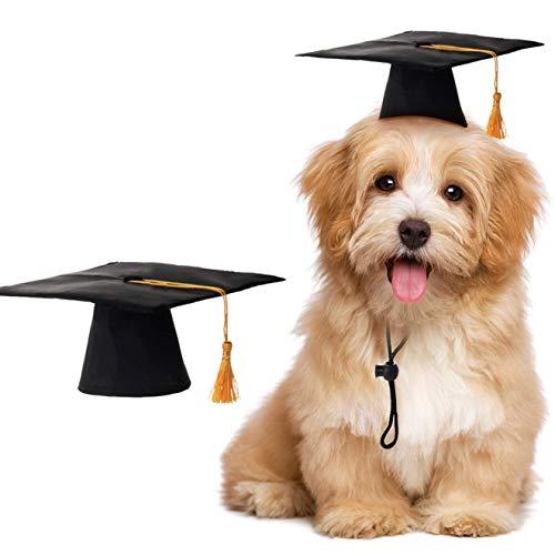 Yangshine Haustier-Abschlussmütze, Hut, Hunde, Katzen, Dekoration, Party-Dekoration, Abschluss-Hut mit goldfarbener Quaste, Black, 2 Pieces (Boxer Dog Kostüm)