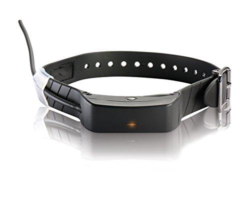 SportDog GPS Ortungssystem Zusatzhalsband TEK Serie