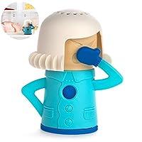 Réfrigérateur propre réfrigérateur absorbant air freshener titulaire (couleur aléatoire) 1PC