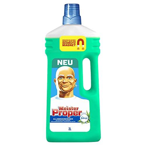 Meister Proper Allzweckreiniger Frühlingserwachen, 2000 ml