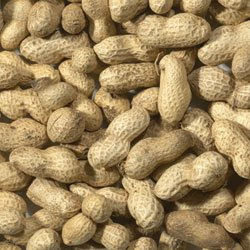 11.3KG (25lb) MALTBYS STORES PEANUTS IN SHELLS MONKEY NUTS WILD BIRD FOOD