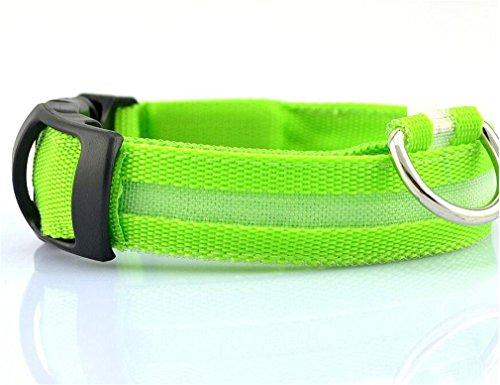 Stale Nylon LED Haustier Hundehalsband Nacht Sicherheit Blinkt Glow In The Dark Hundeleine Hunde Leuchtende Fluoreszierende Kragen Heimtierbedarf Green L