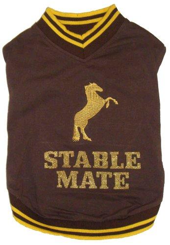 Stabile Mate Hund T-Shirt, braun mit gelb - Gelb Motto Kostüm