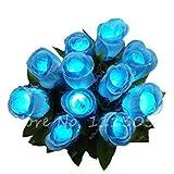 3: Magico Luminous Rose seme notte in vista del più bello bonsai Fiore Desk Mini seme di fiore in vaso di 150 PCS/Pacchetti 3 di farmerly