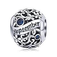 Birthstone Charm 925 Sterling Silver Birthday Charm Love Charm Aniversary Charm for Pandora Charm Bracelet