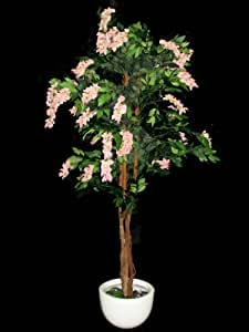 Fourwalls Wisteria Plant (Mixed Material,Pink)