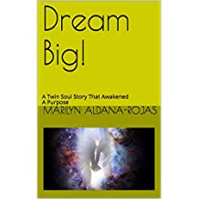 Dream Big!: A Twin Soul Story That Awakened a Purpose (English Edition)