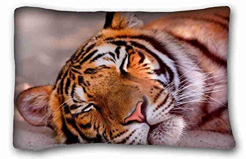 Custom Cotton & Polyester Soft ( Animals tiger faces sleeping big cat ) Custom Cotton & Polyester Soft Rectangle Pillow Case Cover 18