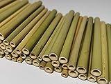 aktiongruen Bambusröhrchen Wildbienenhotel Insektenhotel Bastelsachen (70 Stück) 12cm mit Lehmpulver