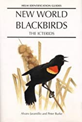 New World Blackbirds: The Icterids (Helm Identification Guides)