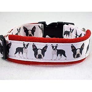 """Halsband""""Boston Terrier"""" Größe S 30 bis 35 cm Halsumfang"""