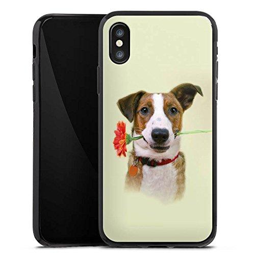 Apple iPhone X Silikon Hülle Case Schutzhülle Hund Blume Jack Russell Terrier Silikon Case schwarz