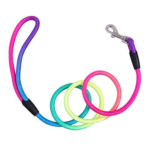 cuteco 1PC Rainbow Nylon Hundeleine Pet Leine Gurt verstellbar Traktion Halsband für Hund Training und Out Going